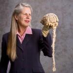 Мозг и нирвана