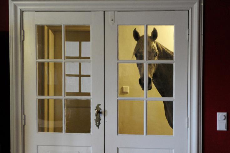Конь пиар