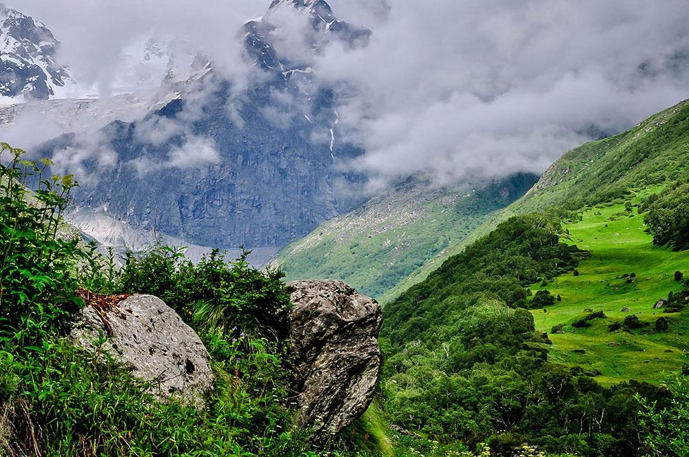 Гималаи - долина цветов